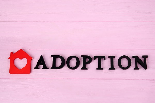 How An Attorney Can Help During the Adoption Process